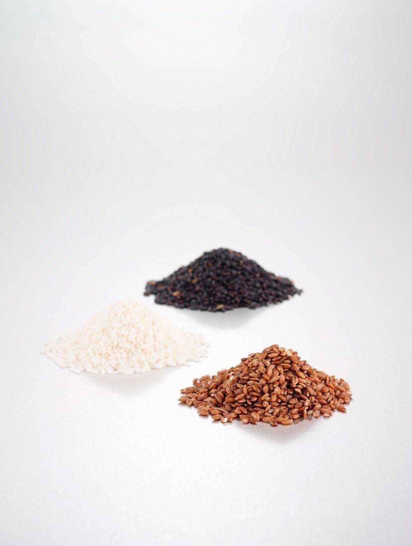 Assorted varieties of rice (red rice from Bhutan, Kalijira basmati rice, black rice from china)