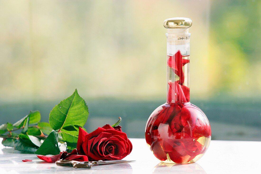 Bottled rose vinegar and a rose