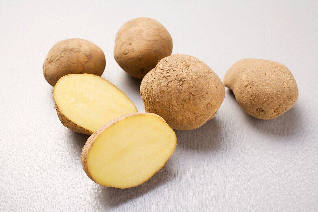 Ackersegen (Mehligkochende Kartoffeln)