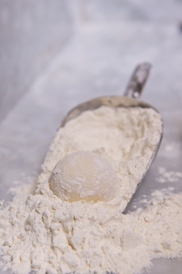 Bread dough and flour in a scoop