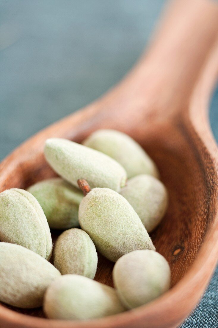 Fresh almonds on a wooden ladle