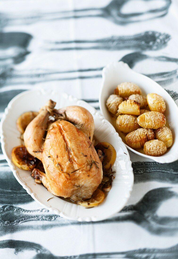 Roast spring chicken with roast potatoes