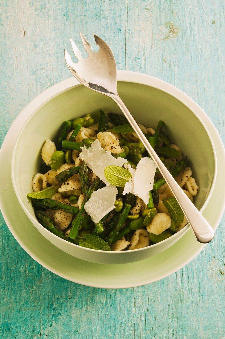 Orecchiette primavera (pasta green asparagus and fava beans)