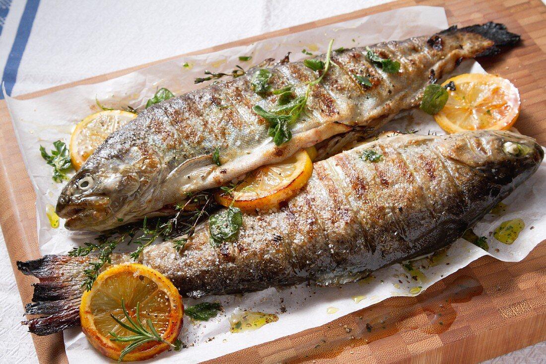 Grilled trout on parchment paper