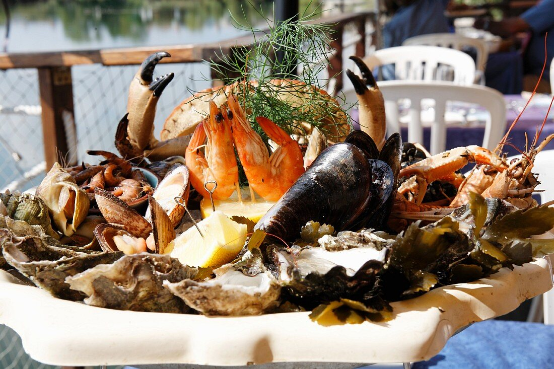 A seafood platter in the sunshine