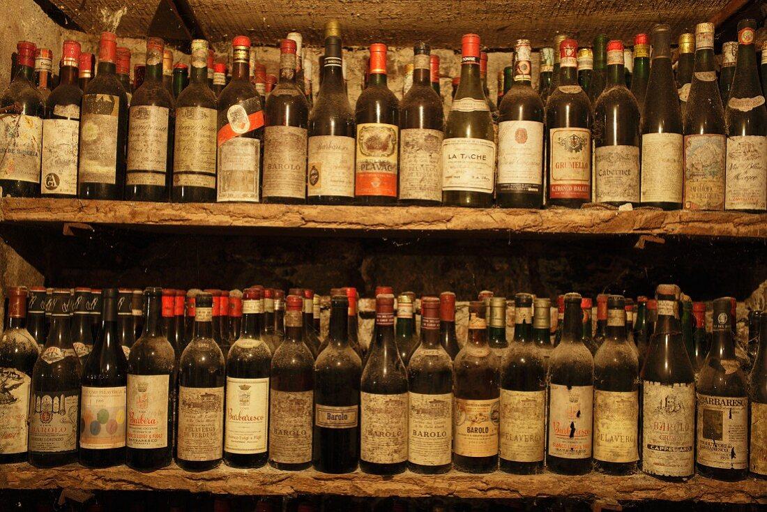 Dusty wine bottles on old shelving