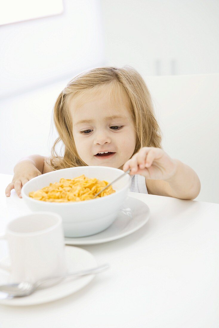 Toddler girl reaching to eat bowl of cereal