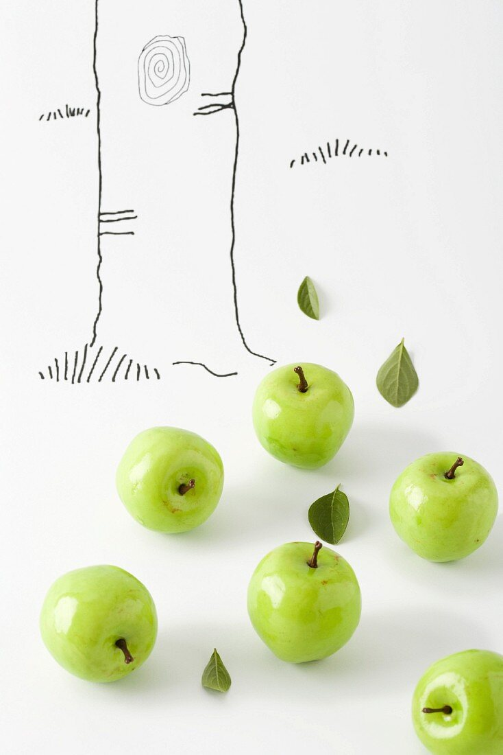 Green apples below drawing of tree trunk