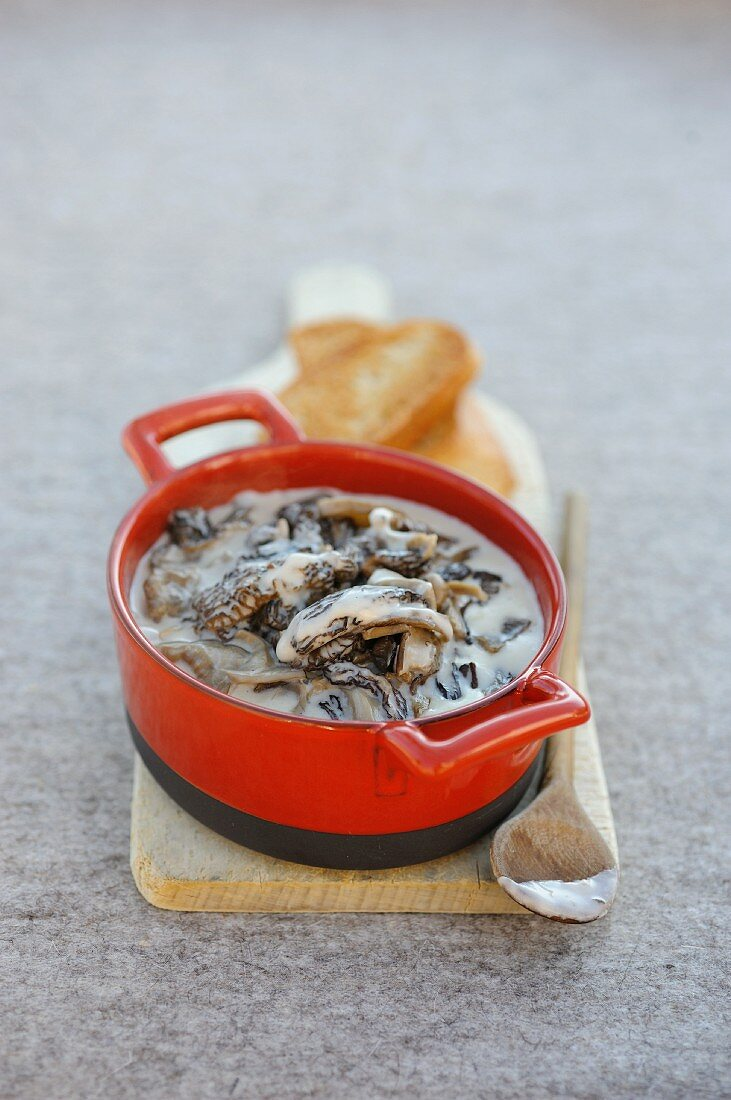 Morel and cloud funnel mushrooms in a cream sauce