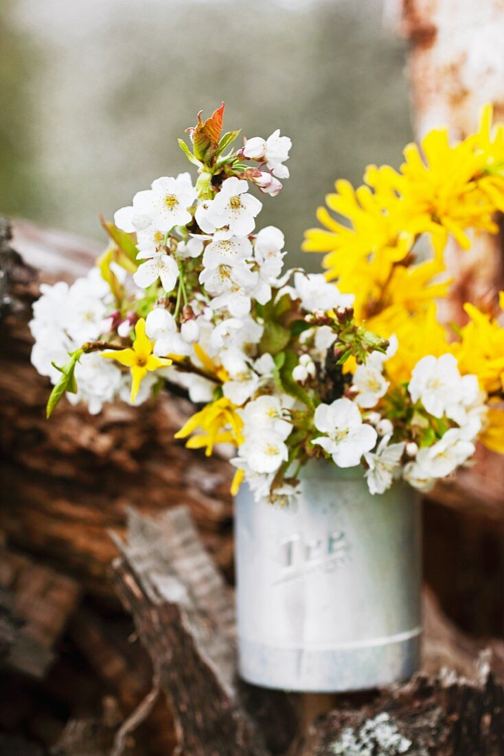 A spring twig in a metal vase
