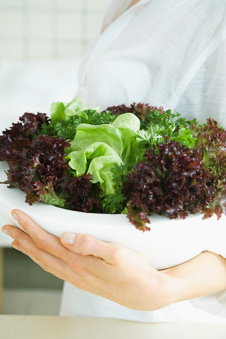 Woman holding large bowl of salad, cropped view