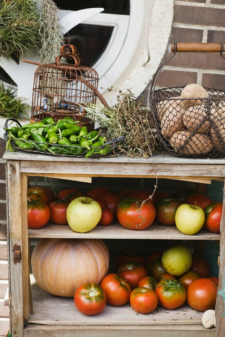 A storage shelf for vegetables and fruit