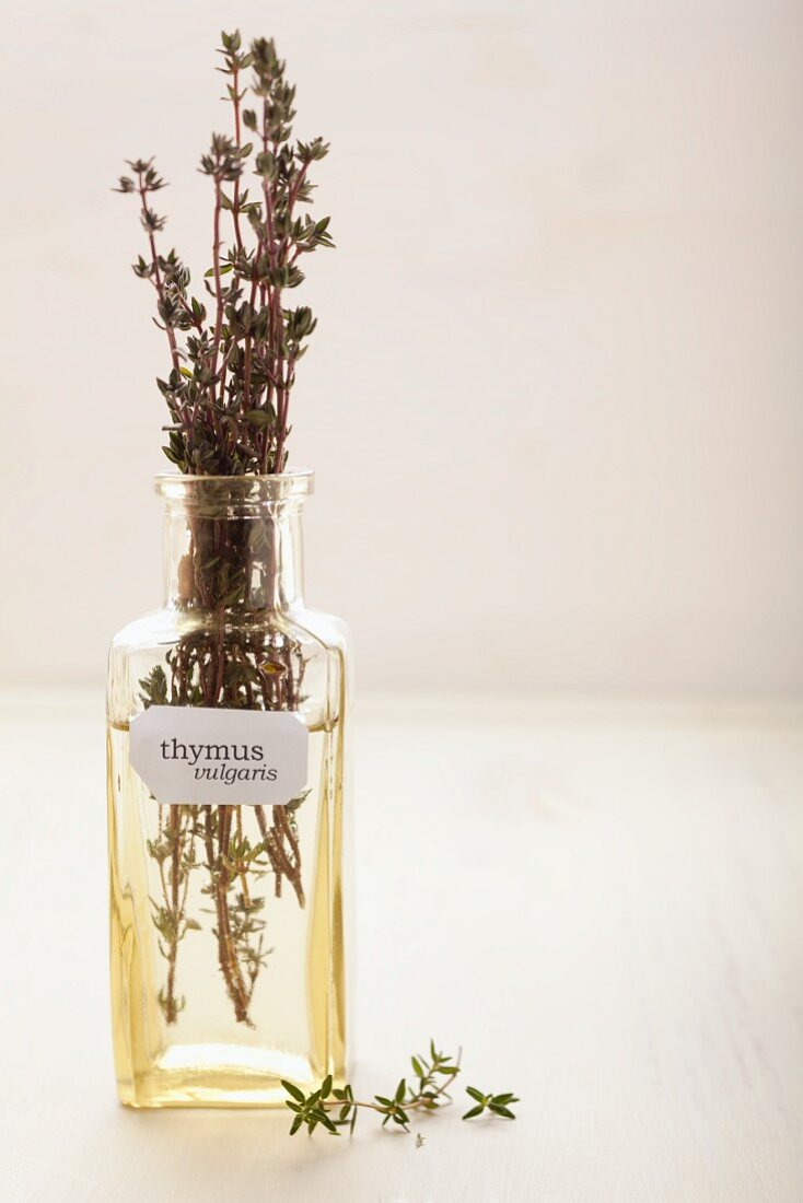 Sprigs of time in an apothecary bottle