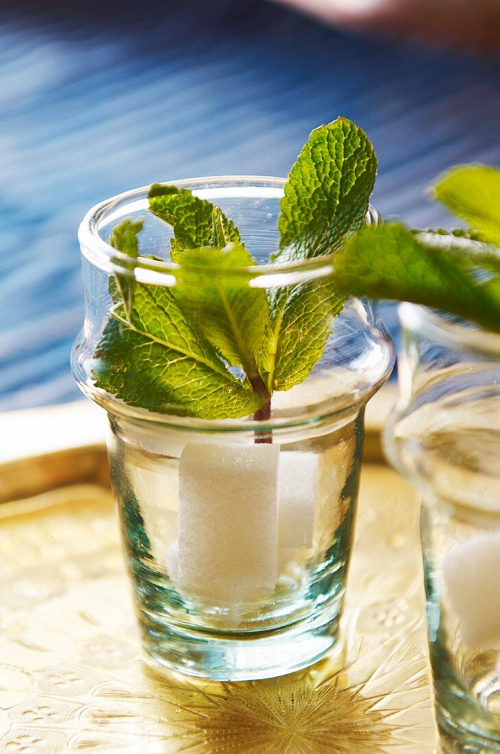 Peppermint and sugar in a glass for making peppermint tea