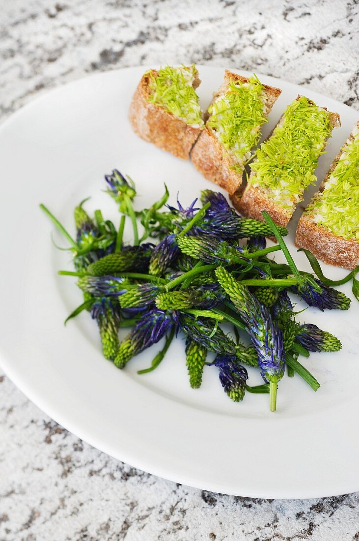 Devil's claw flowers with hazelnut oil and a slice of bread topped with fir sprouts