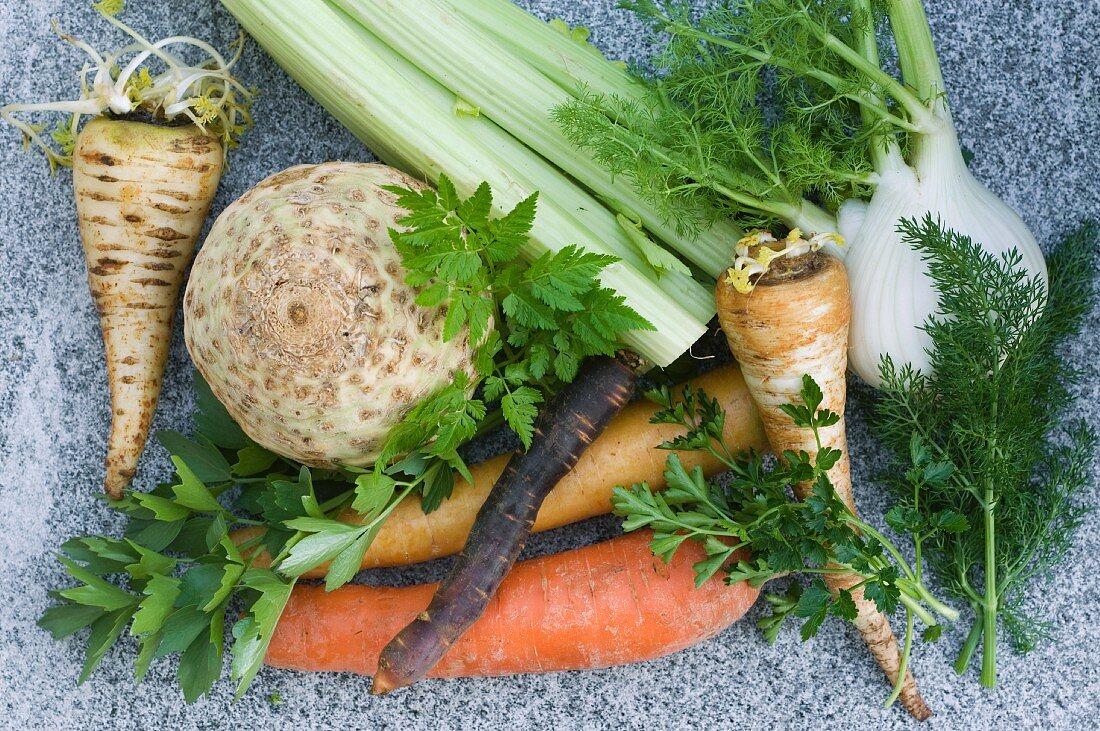 Various types of vegetables and herbs (Umbelliferae)