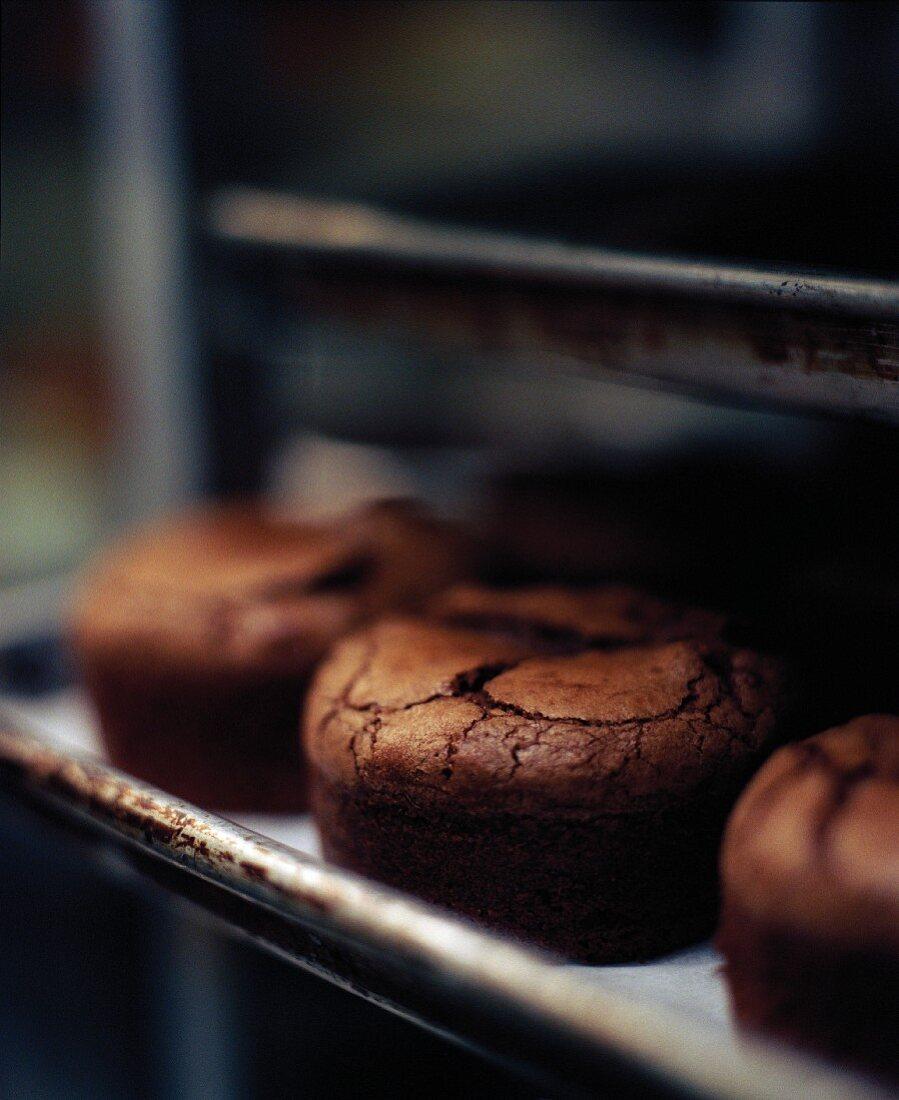 Gluten Free Chocolate Mini Cakes on a Sheet Pan