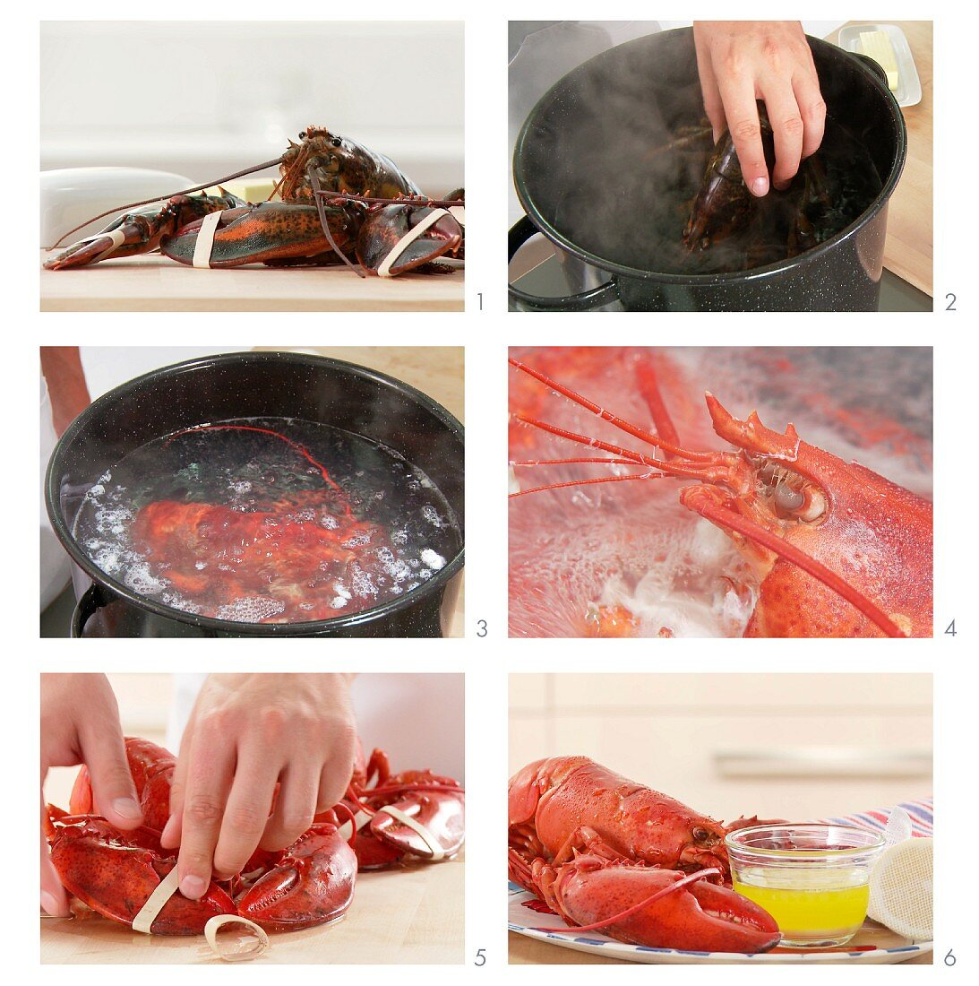 Lobster being cooked (US-English voice-over)
