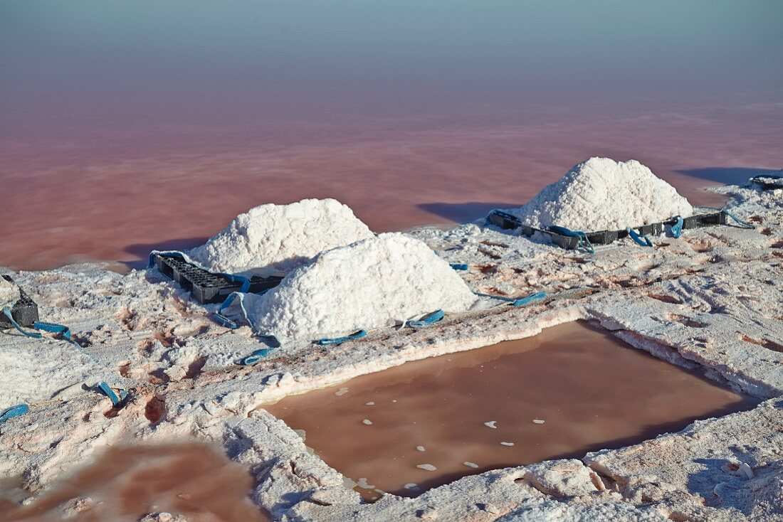 Sea salt extraction in Camargue, France