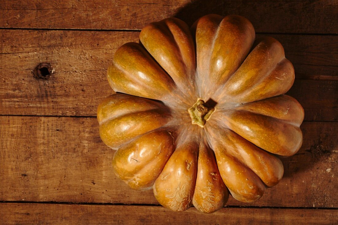 A crookneck pumpkin on a wooden surface