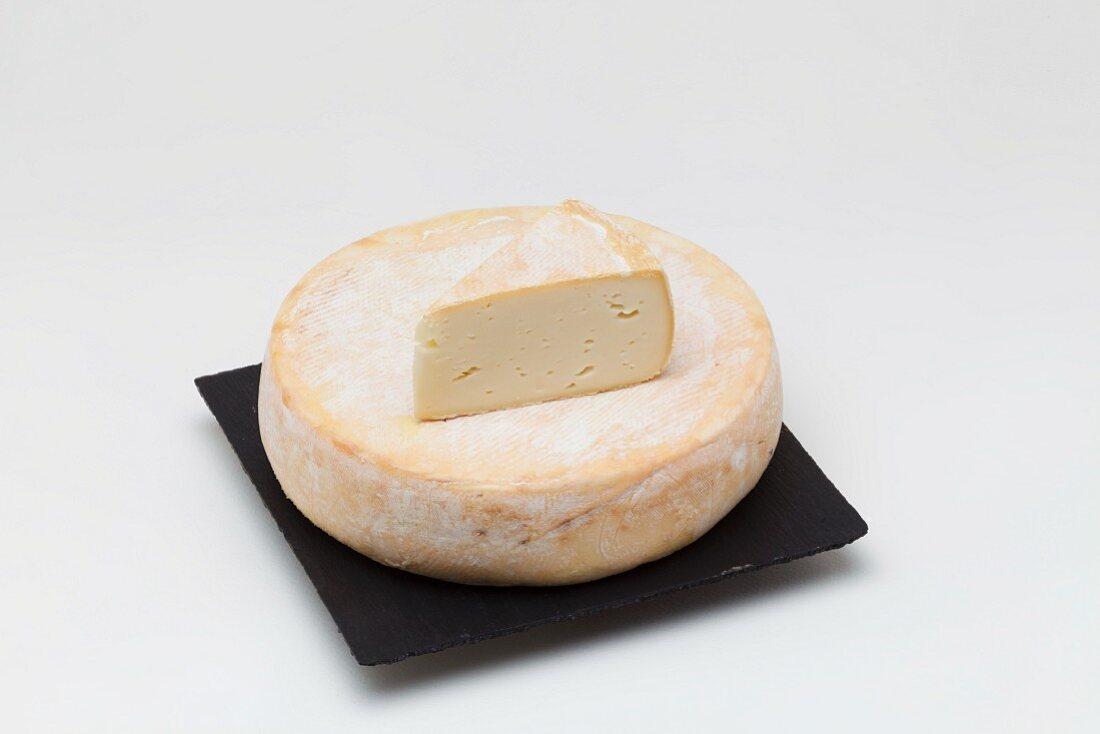 Abbaye de Tamie (semi-soft cheese from Savoy)