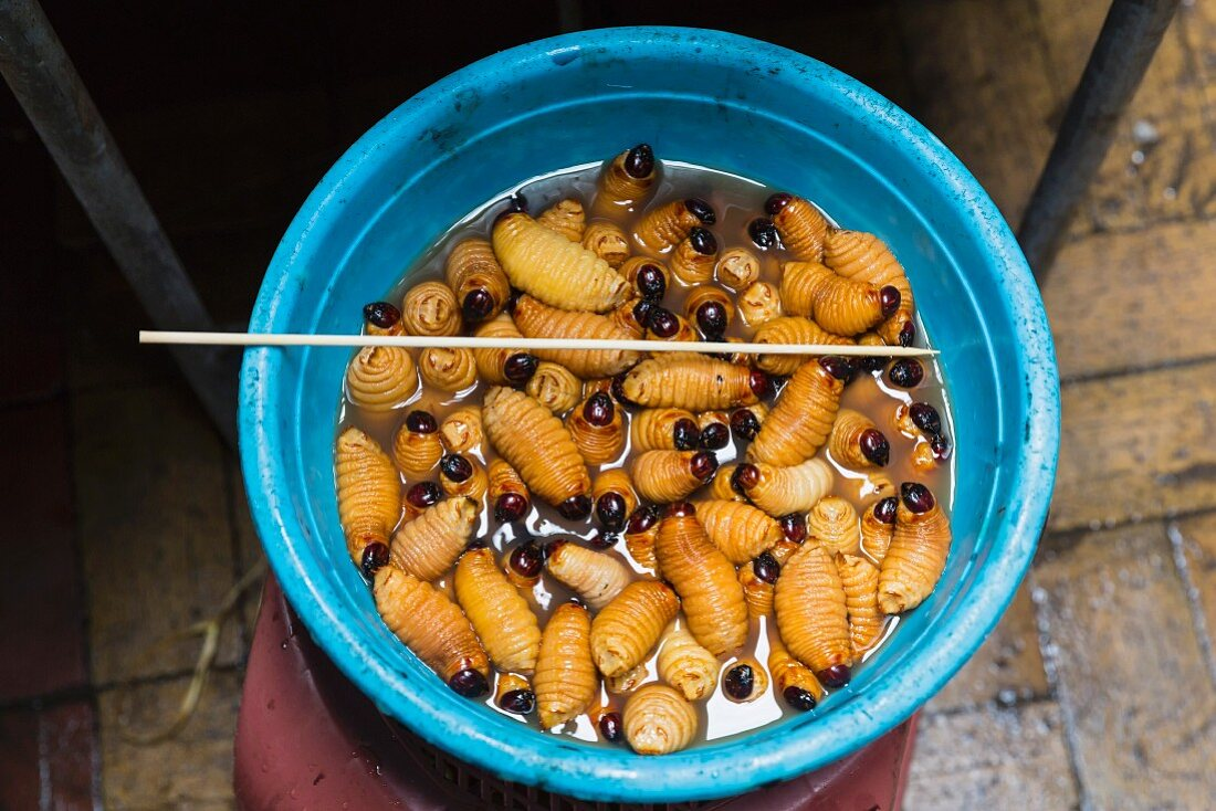 Washed weevil larvae for grilled skewers (Ecuador)