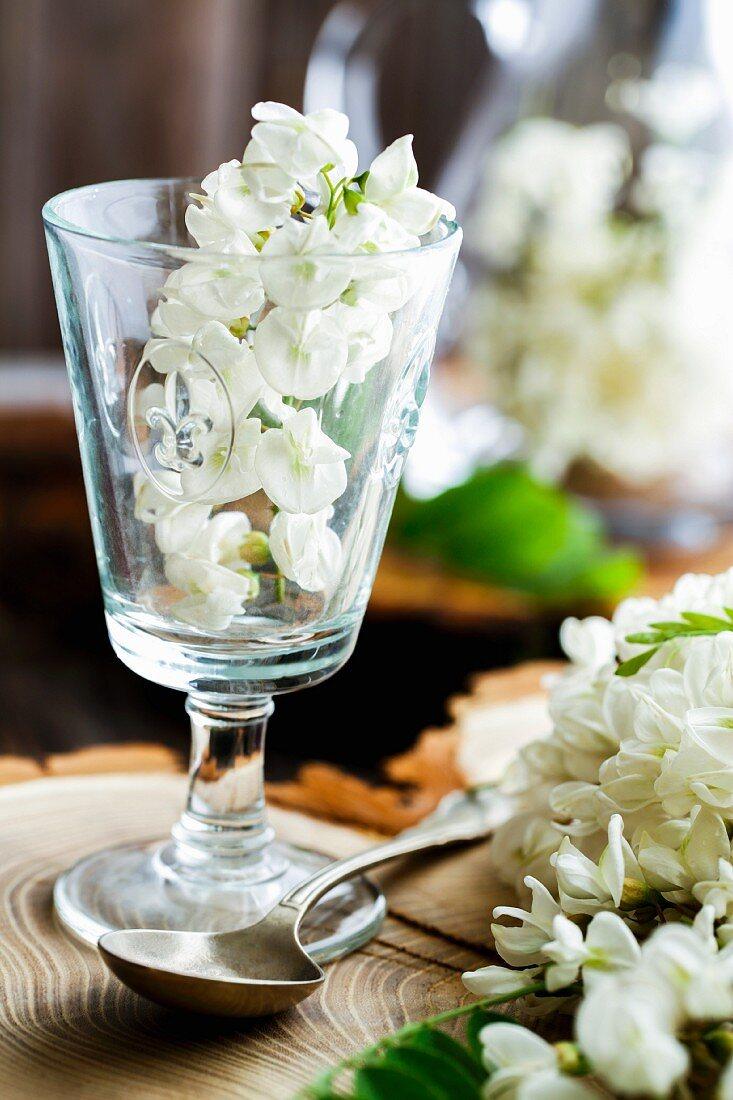 Akazienblüten in Glas