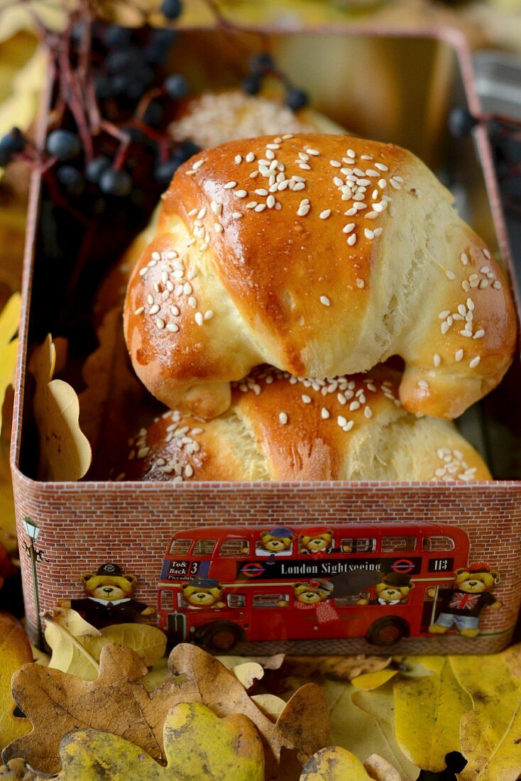 Sesame seed crescent rolls in a tin on autumn leaves