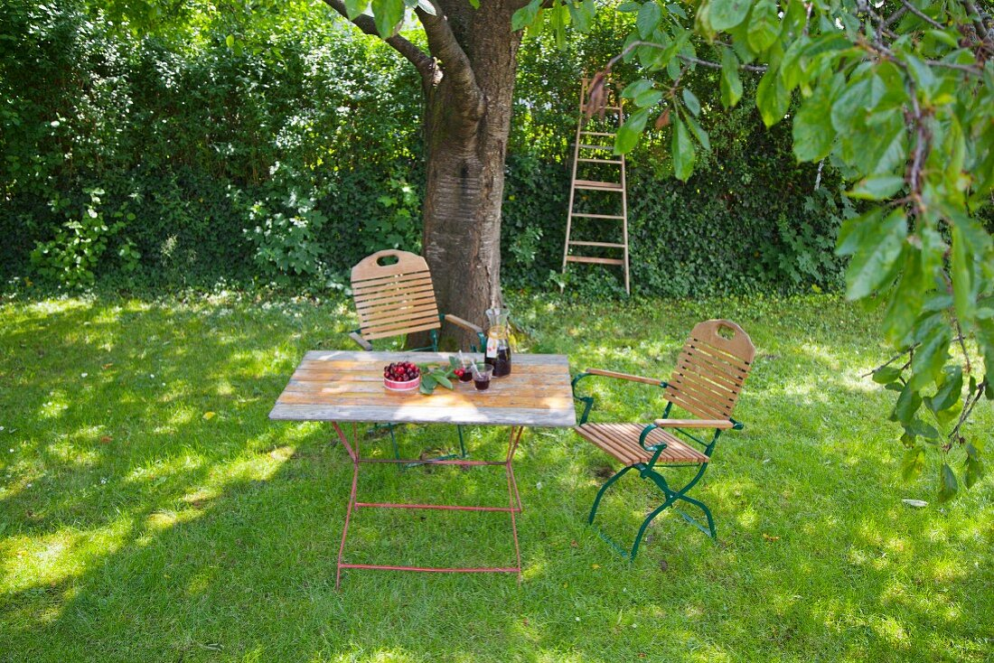 Cherries and juice on garden table under tree