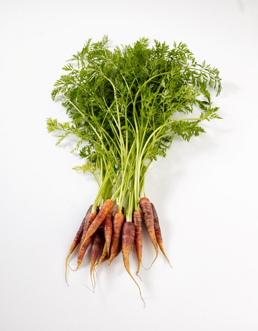 Beta Sweet carrots on a white surface