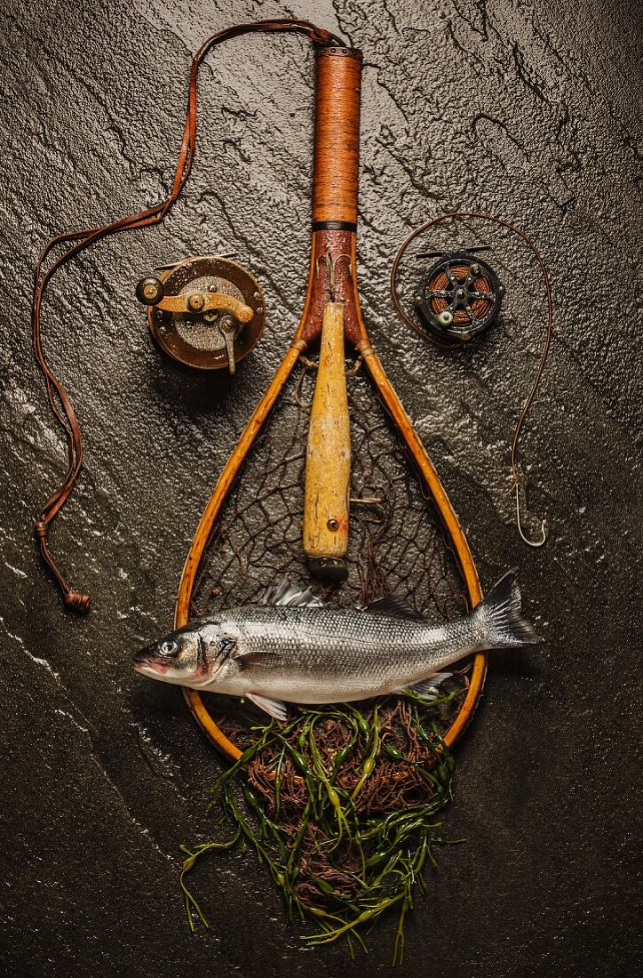 A face made from fishing utensils and a fish