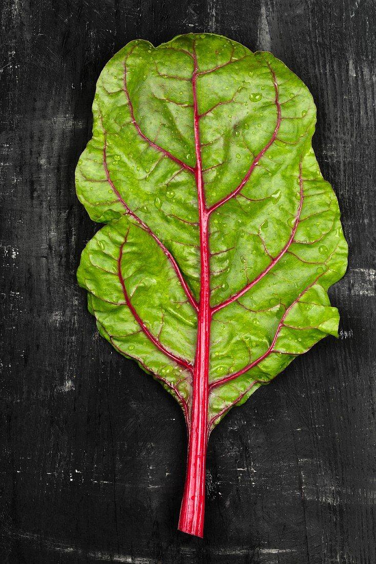 A leaf of rhubarb chard on a dark surface
