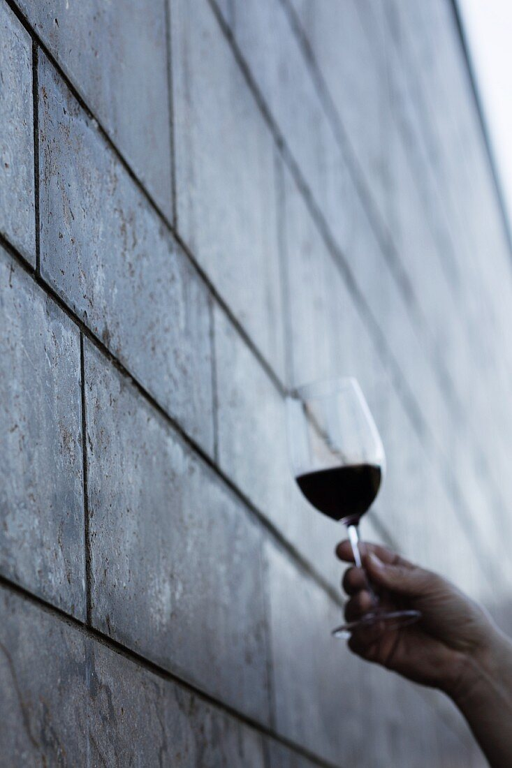 A wine tasting session: a person holding a glass of red wine to check the quality