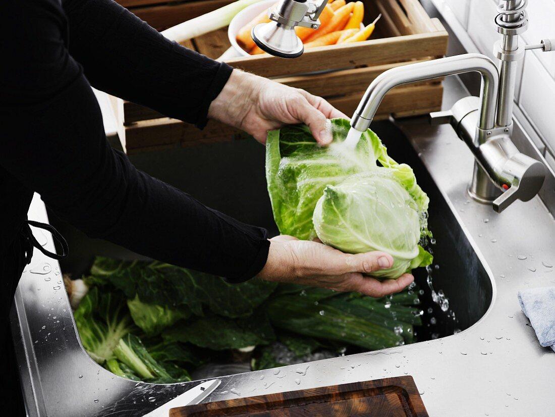 A man washing pointed cabbage under running water in a kitchen sink