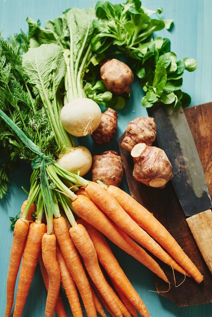 an arrangement of carrots, white turnips, Jerusalem artichokes and lamb's lettuce