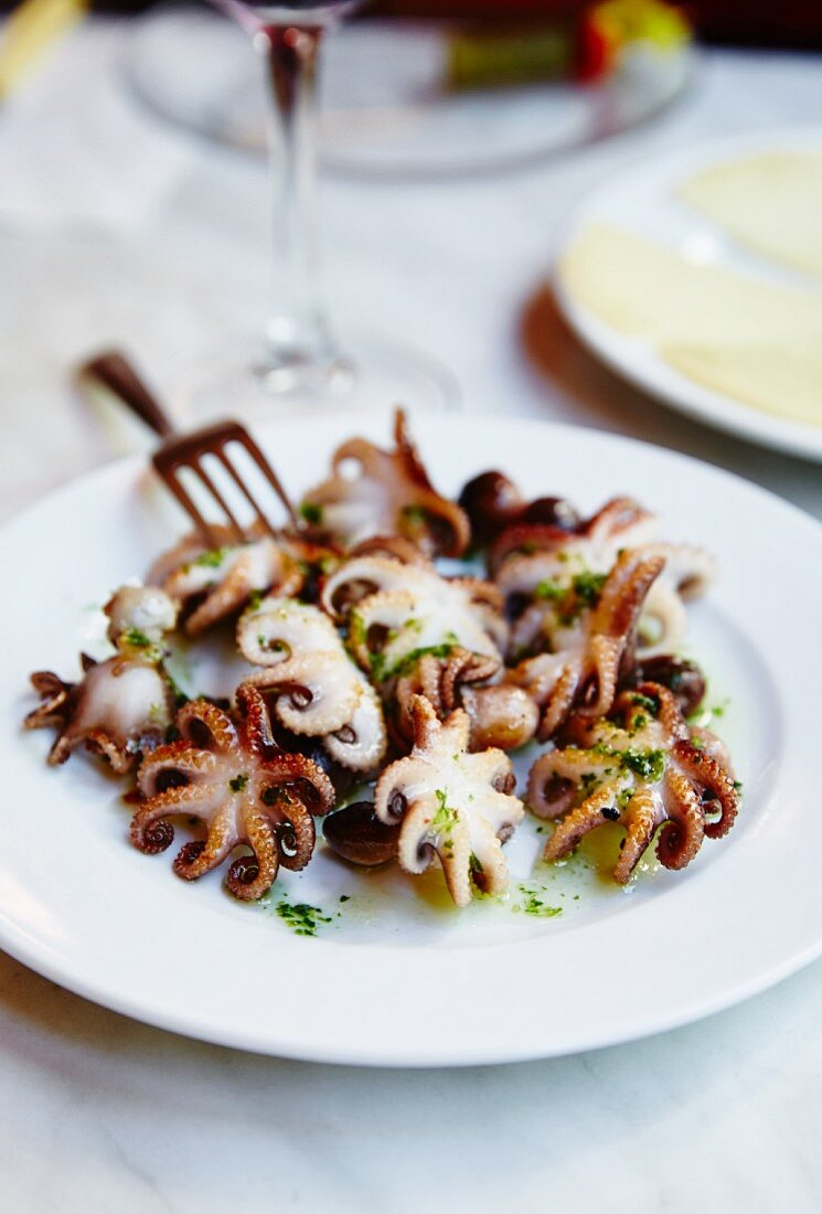 Grilled baby octopus tapas