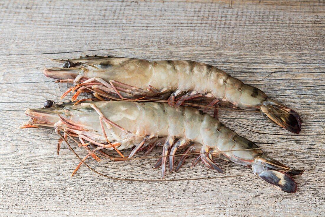 Two king prawns (Black Tiger prawns)