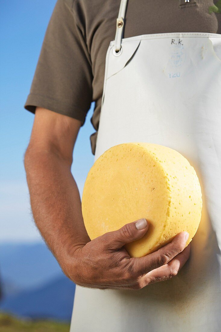 A cheesemaker with a wheel of cheese made from silage-free milk