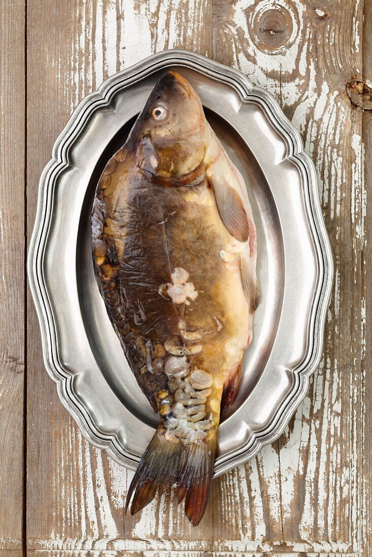 A carp on a silver platter