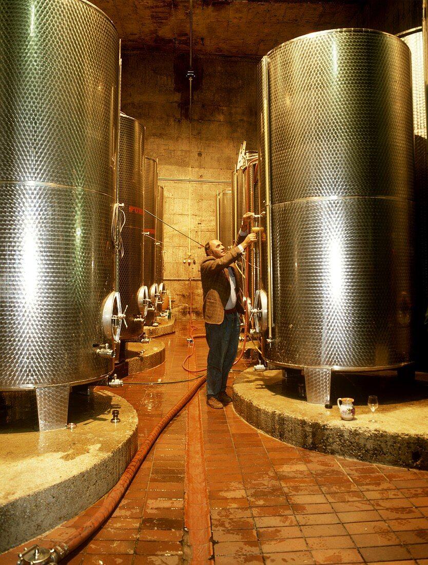Wine cellar of the Dinstlgut vineyard, Loiben, Wachau, Austria