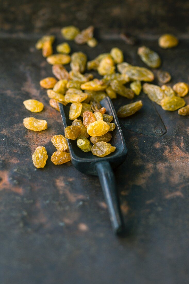 Sultanas on a scoop