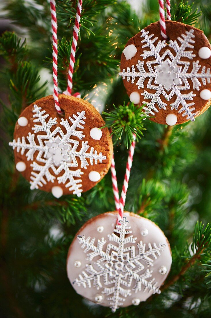 Festive biscuits decorating Christmas tree