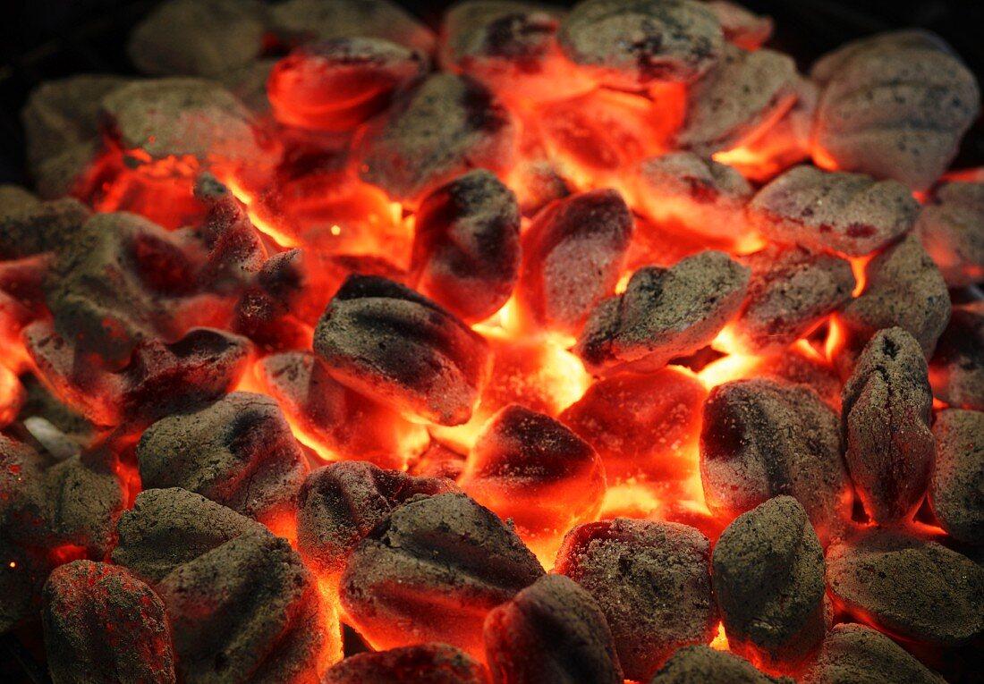 Blazing charcoal