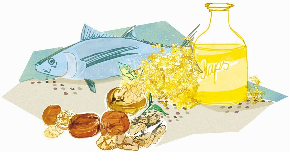 An illustration of omega 3 fatty acids