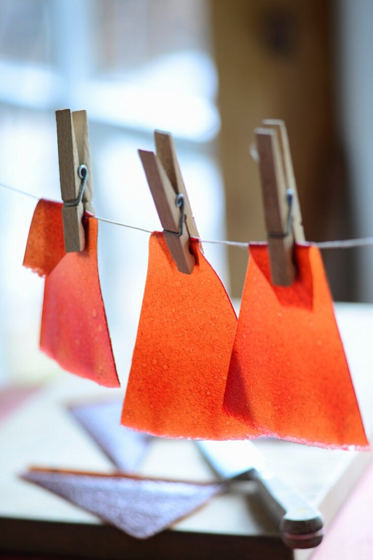 Fruit leather drying on washing line