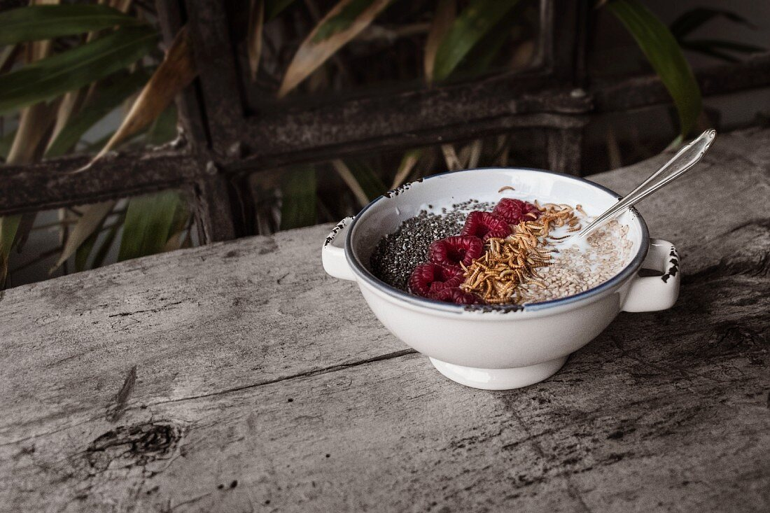 Muesli with yoghurt, raspberries, chia and buffalo worms