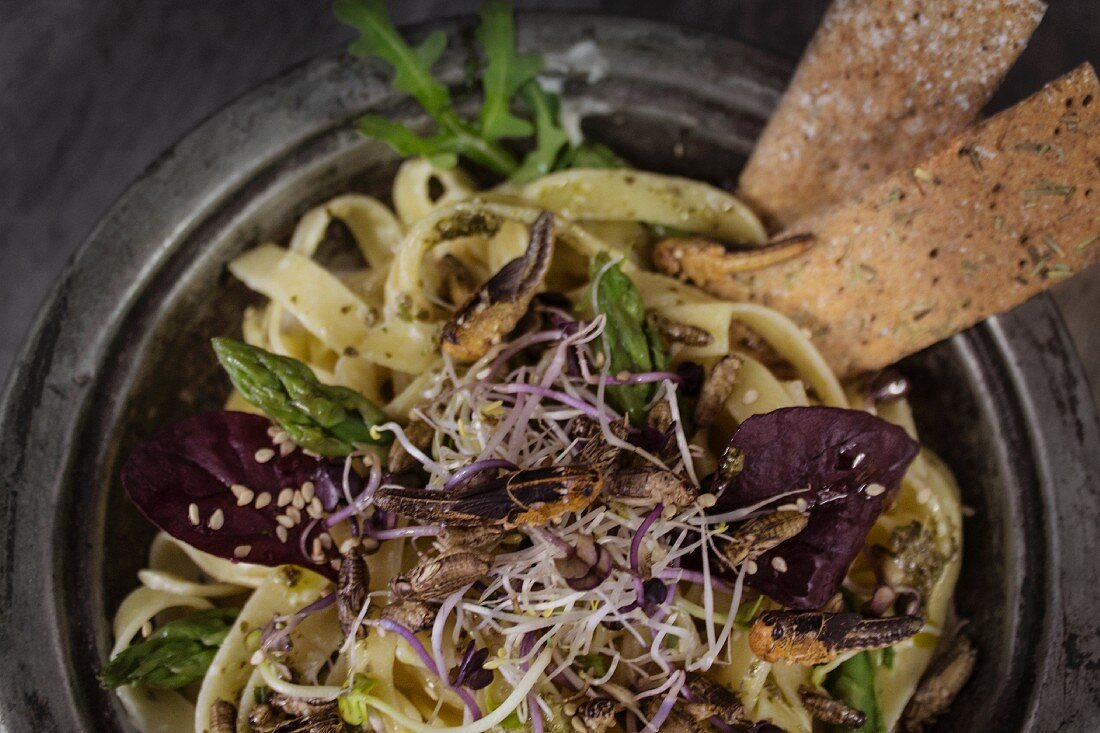 Pasta with green asparagus, pesto and insects