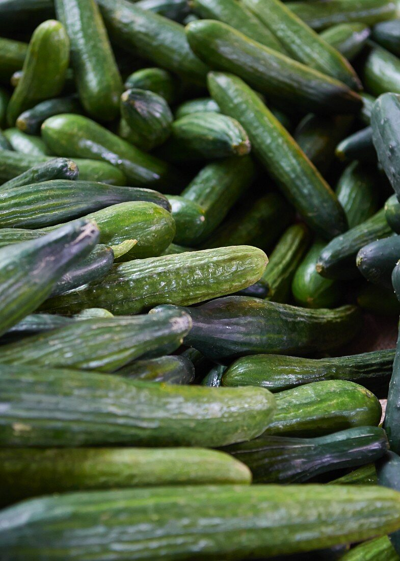 Cucumbers at a market