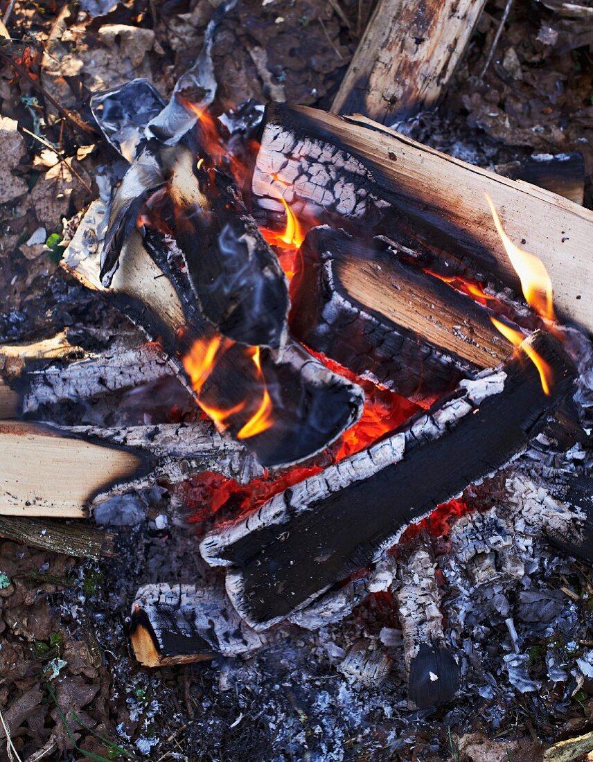 A campfire in winter
