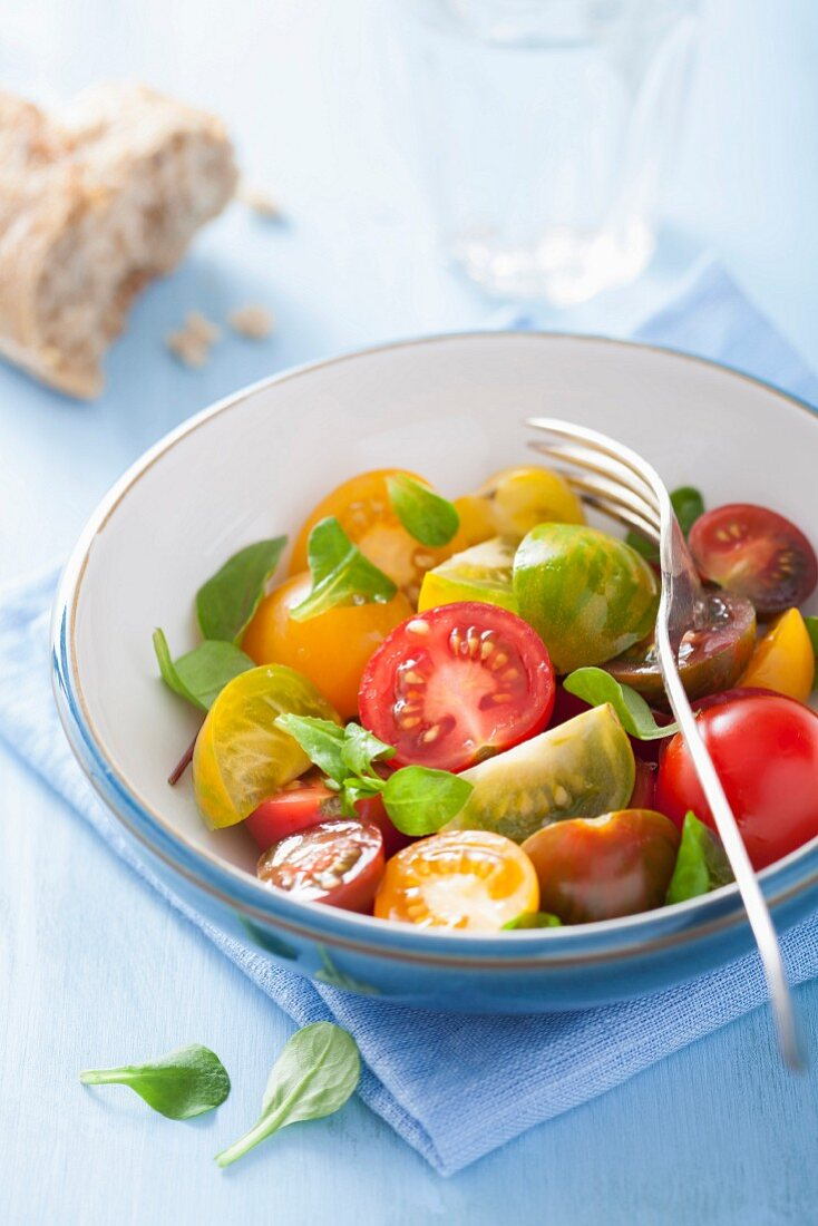 A colourful tomato salad with a chunk of bread an basil leaves